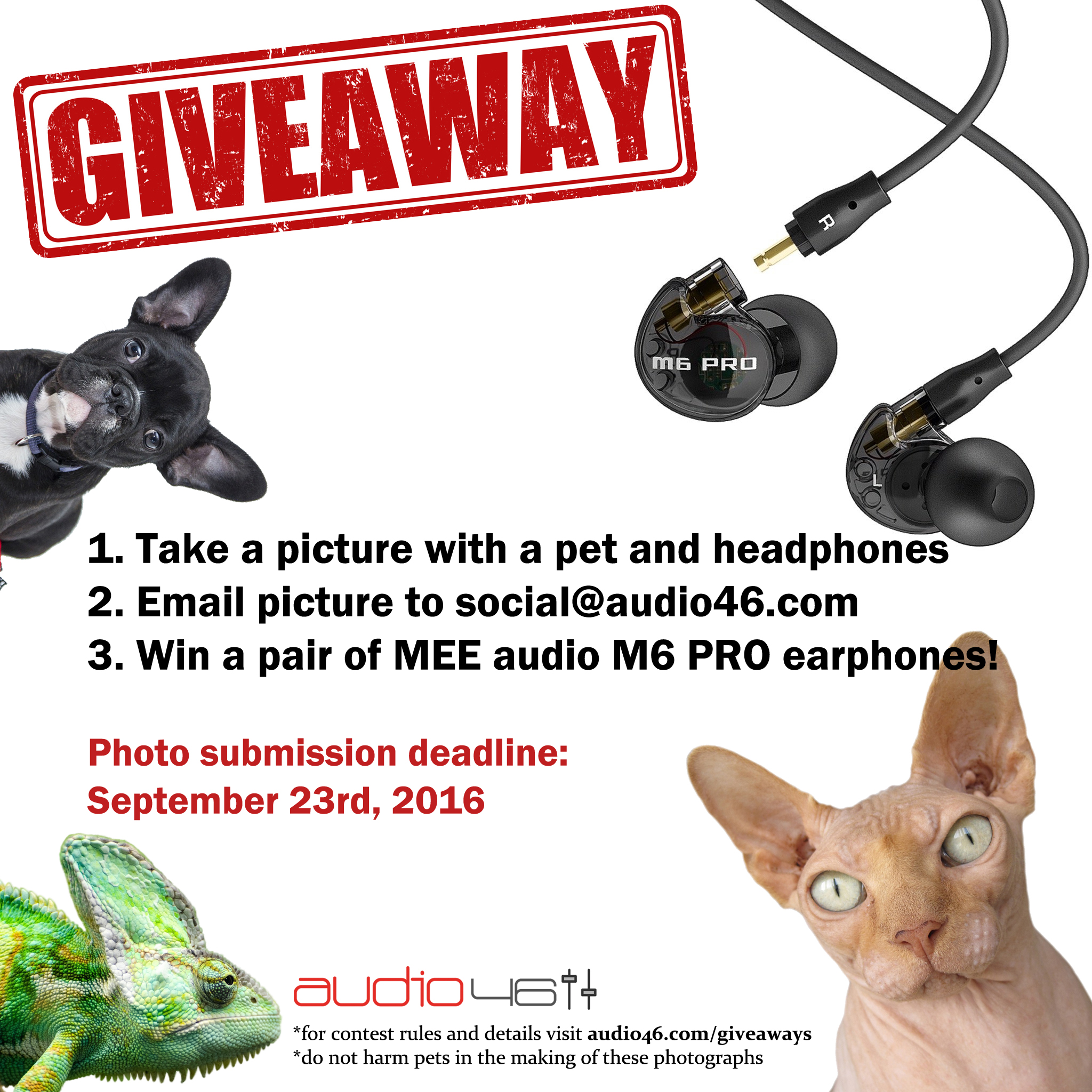Audio46 Headphone And Pet Picture Giveaway